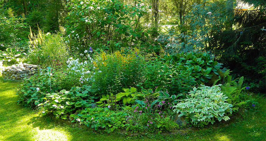 Flower Bed Weed Prevention Address Problems Through Preventative Measures